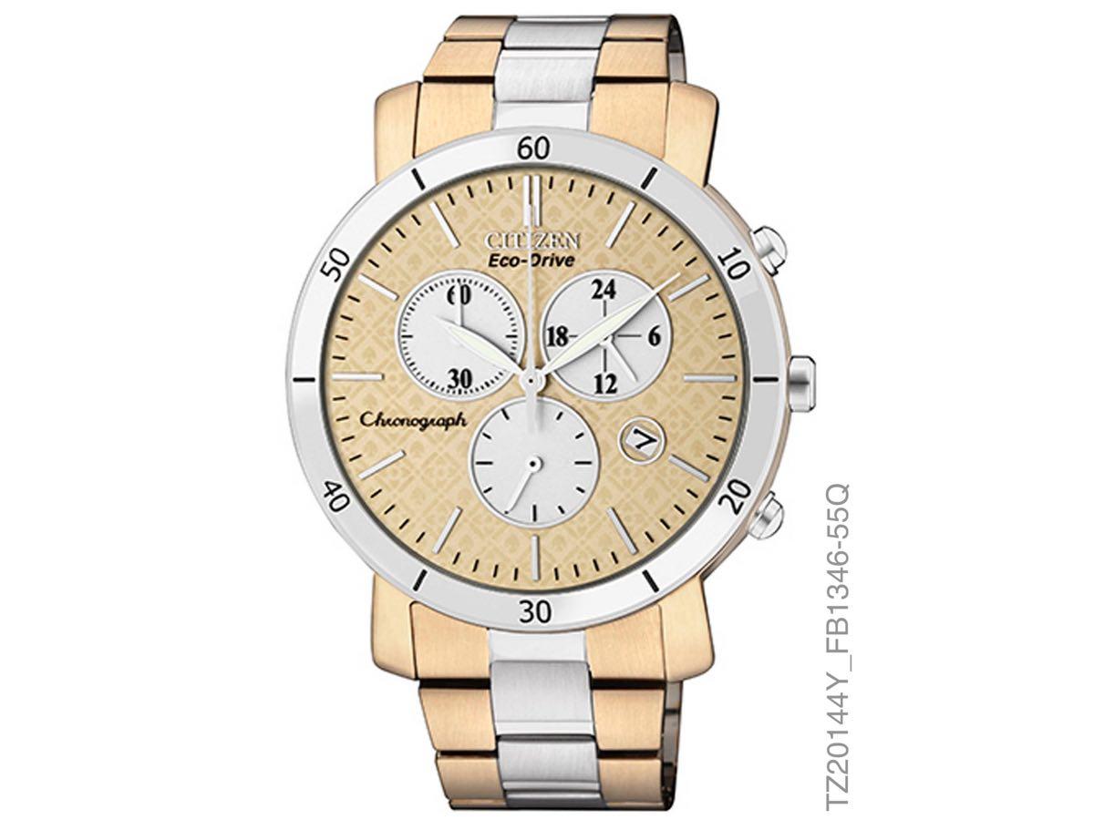 Relógio Eco-Drive Feminino TZ20144Y - Citizen Relógios