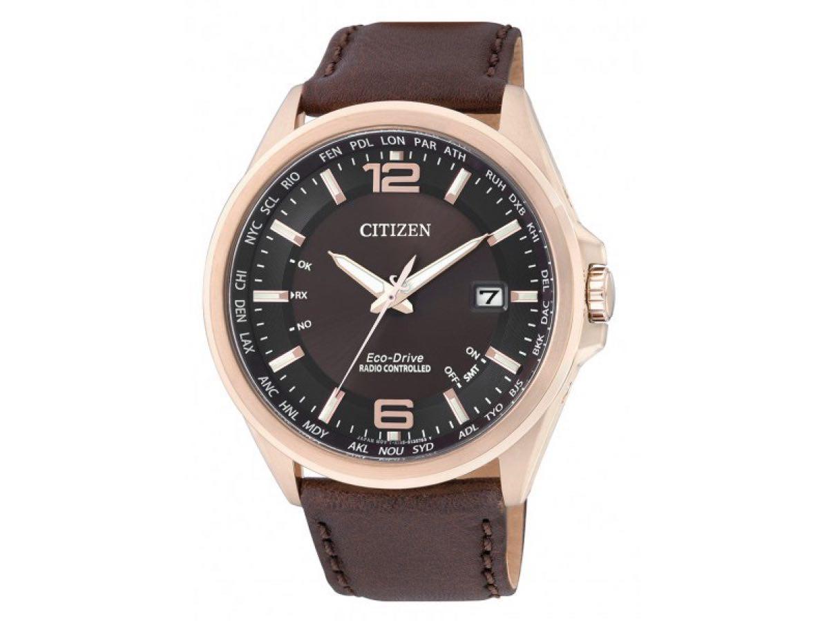Relógio Eco-Drive Masculino TZ20386R - Citizen Relógios